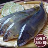 新鮮市集 鮮嫩飽滿公香魚組(2尾/組)(任選)
