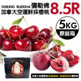 【果之蔬】限時空運 華盛頓西北空運櫻桃禮盒(紅寶石) 9.5ROW 2kg