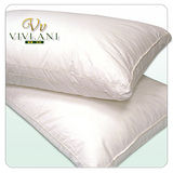 《VIVI.ANI》立體車邊特細纖維羽絲絨枕(2入)