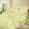 【情定巴黎-春暖花開】特大純棉八件式兩用被床罩組