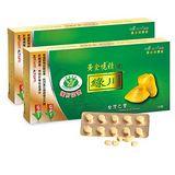 護肝認證-綠川黃金蜆錠(100錠X2盒)